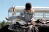 Horse_riding_01