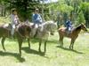 Horse_riding_04